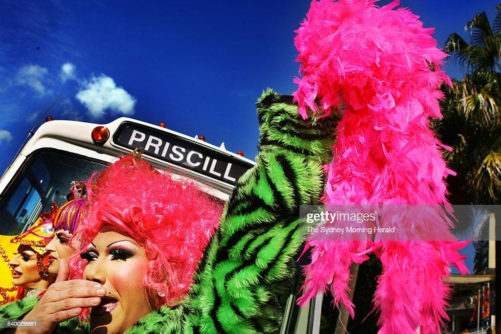 Priscilla star city casino the casino at monte carlo