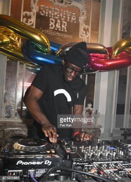 DJ performs during 'Tonic Follies' Villa Schweppes Before Cannes Festival Party at Foundation Mona Bismarck on April 20 2017 in Paris France