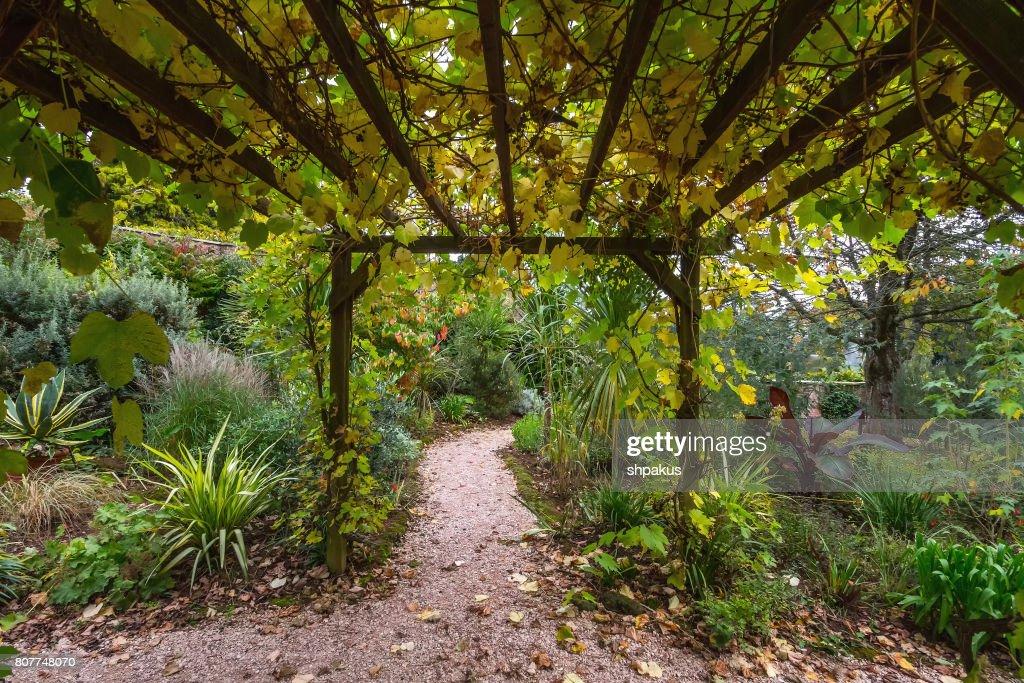 Pergola In The English Garden : Stock Photo