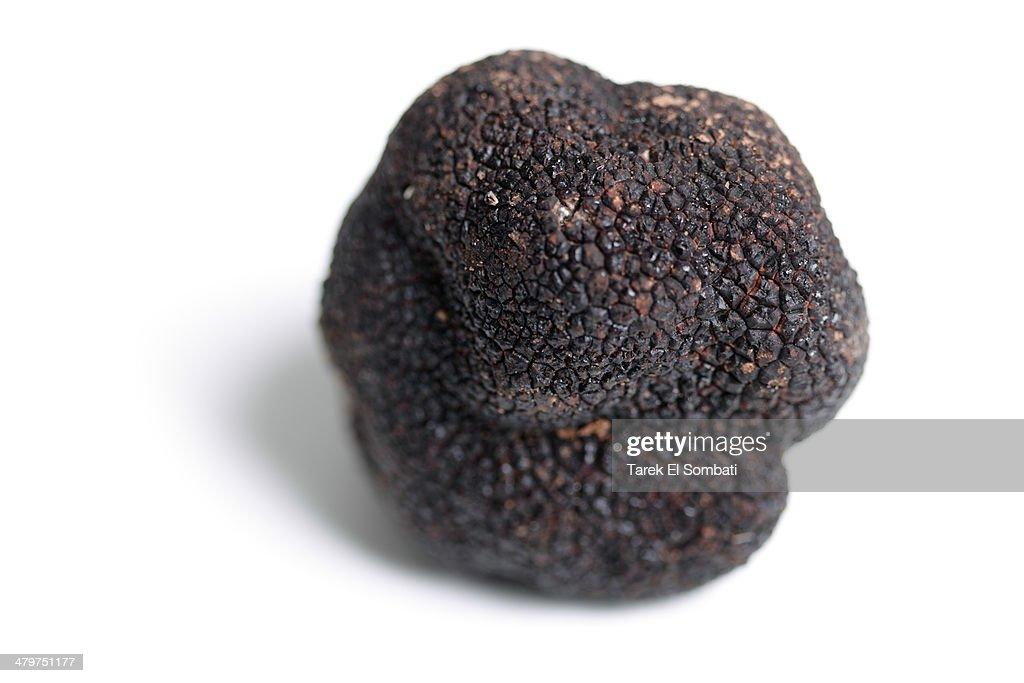 Perigord Black Truffle