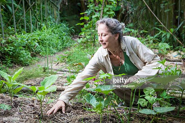 Permaculture designer and educator Tammy Turner has called Taiwan home for almost 30 years She sees the 'bad expat' sterotype as only being held by a...