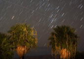 Perseid meteors fall as a satellite passes across the sky early August 12 2008 near Rogers Spring in the Lake Mead National Recreation Area Nevada...