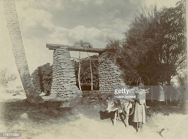 A Persian well outside Bushehr or Bushire in Iran circa 1880