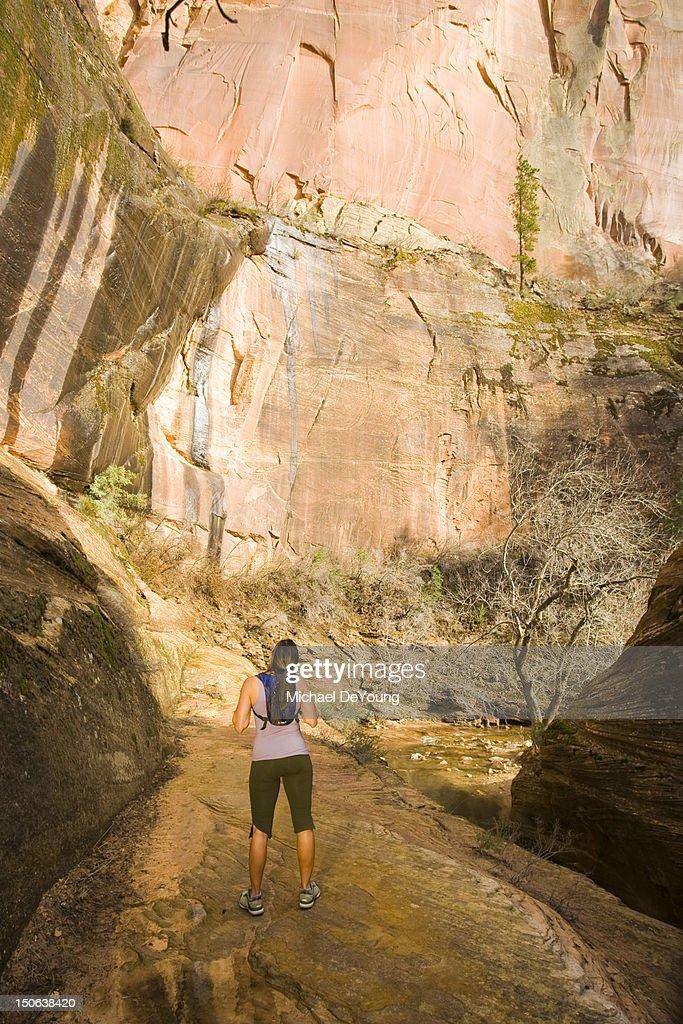 Persian woman hiking near cliff : Stock Photo