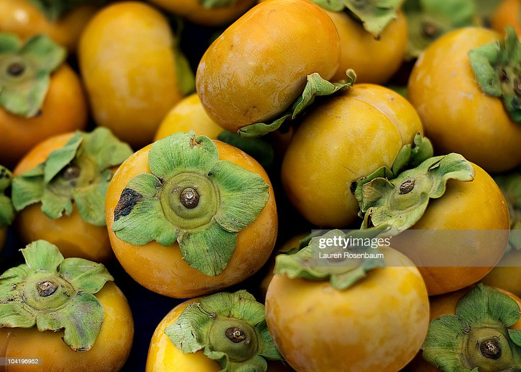 Persimmons : Stock Photo