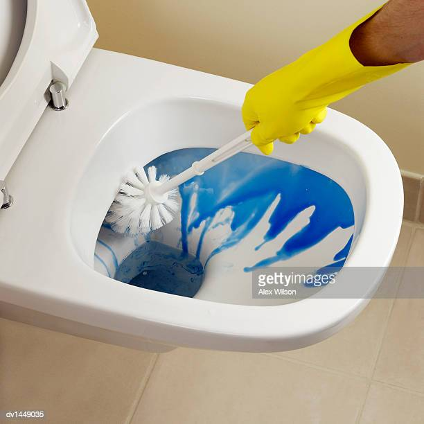 Person Cleaning a Toilet. Toilet Brush Stock Photos and Pictures   Getty Images