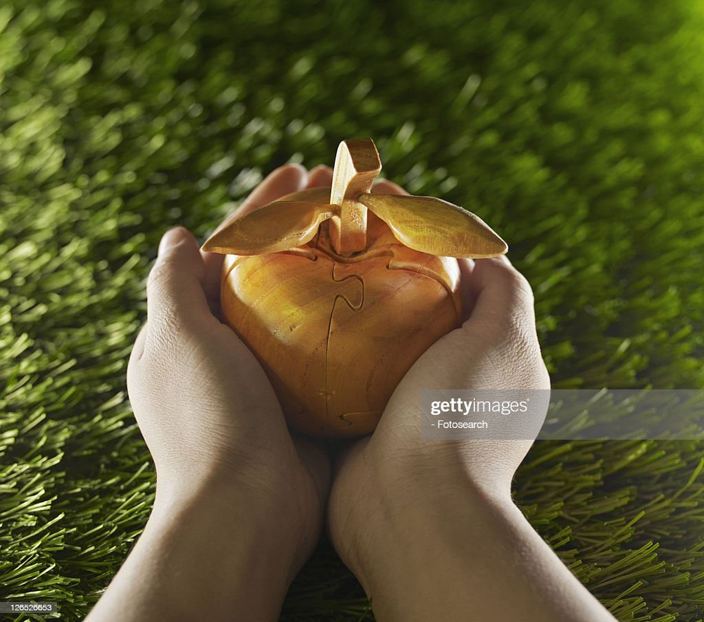 Person Holding Apple Made From Wood : Stock Photo
