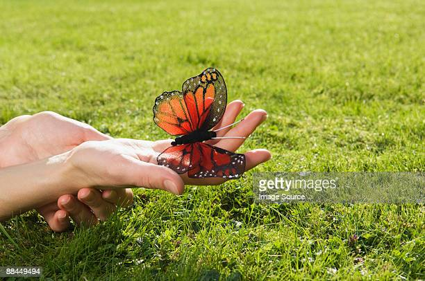 Person holding butterfly