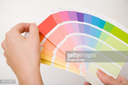 Person holding colour charts