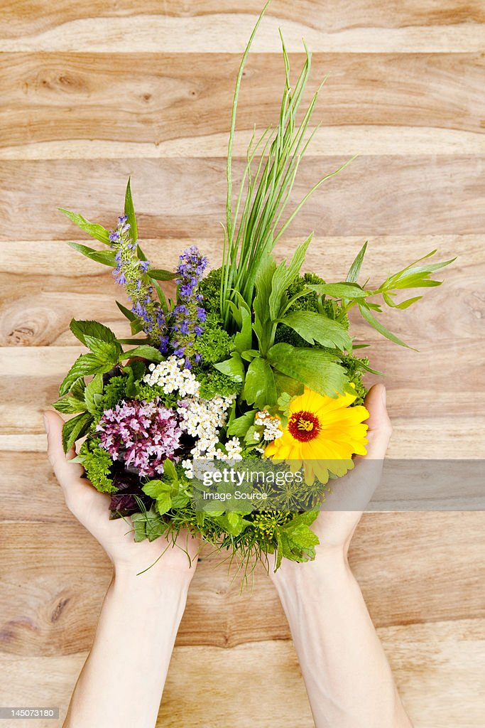 Person holding edible flowers and herbs