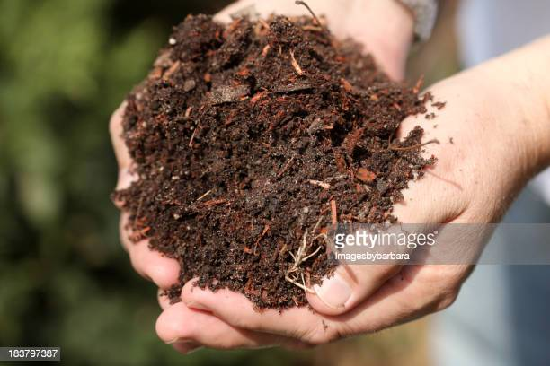 Person holding out a handful of soil