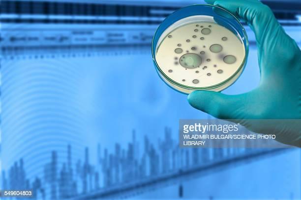 Person holding petri dish