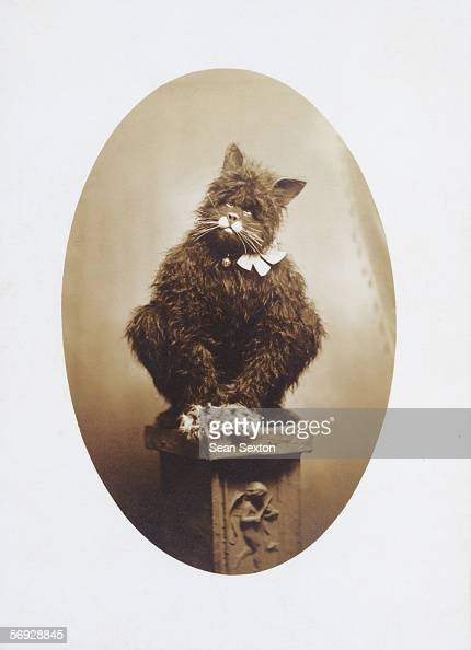 A person in a pantomime cat costume advertises Black Cat cigarettes from Carreras Ltd Glasgow 1911