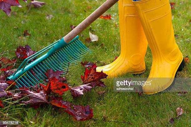 Herbst Garten Reinigung