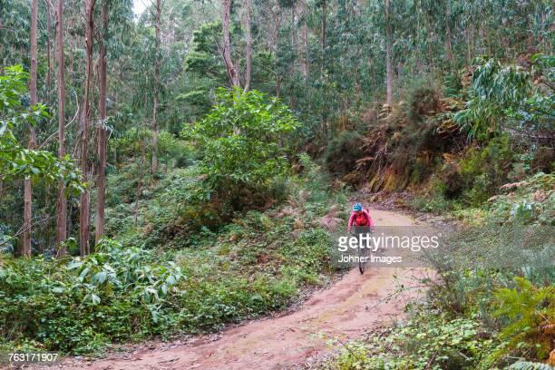 Person mountain biking through forest