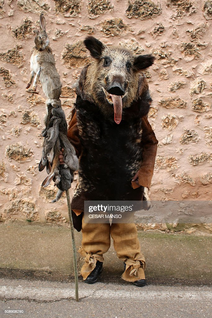 A person performing 'Zarramaco' character wears a wild board's head and holds a stick with a dead hare as he poses during the celebration of 'El Gallo de Carnaval' (The Carnival's Cock) in Mecerreyes, in the northern Spanish province of Burgos, on February 7, 2016. The Gallo Carnival is a pagan festival in which people participate singing, dancing and attacking the 'Gallo' that is defended by Zarramacos. AFP PHOTO / CESAR MANSO / AFP / CESAR MANSO
