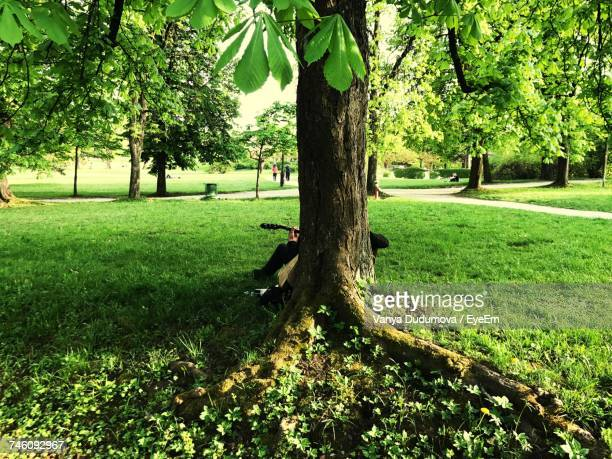 Person Playing Guitar While Sitting On Grassy Field Against Tree At Park