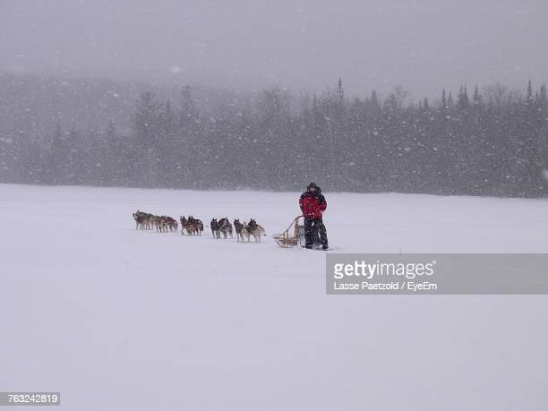 Person Riding Sled On Snow Field