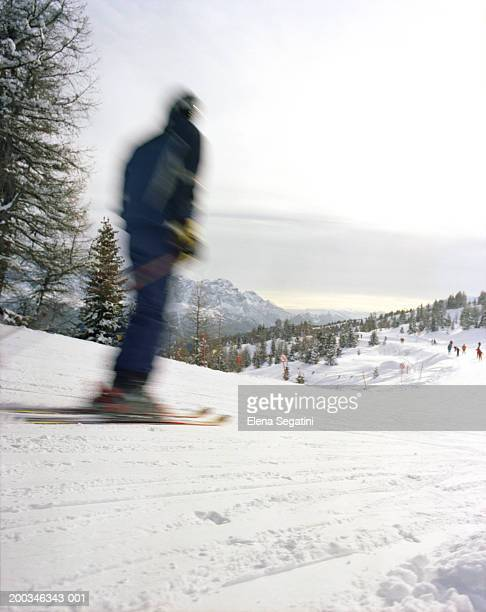 Person skiing, rear view (blurred motion)