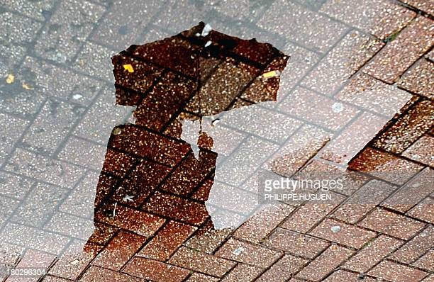 A person using an umbrella to shelter themselves from the rain is reflected in a puddle on September 11 in Lille AFP PHOTO / PHILIPPE HUGUEN