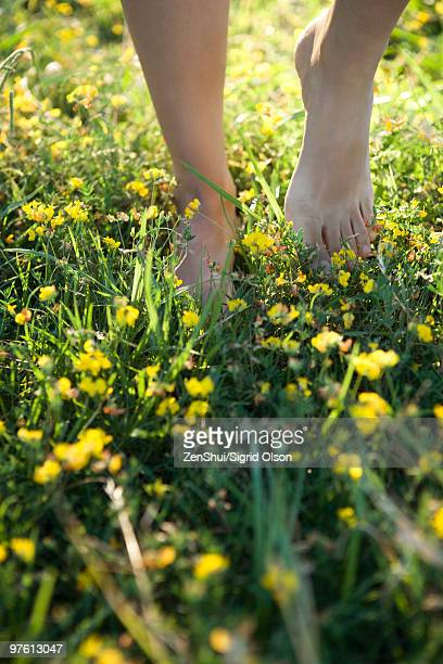 Person walking barefoot in field of wildflowers, cropped