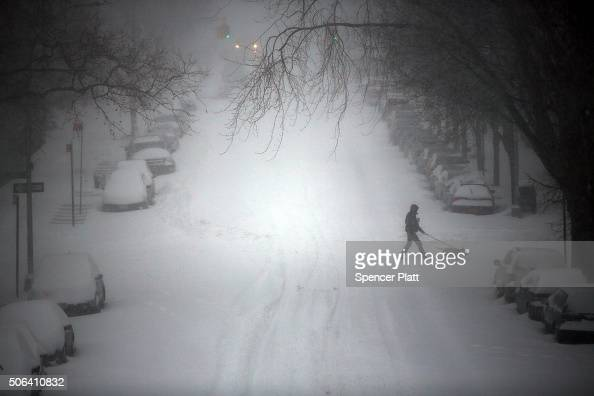 A person walks a dog through blizzard like conditions on January 23 2016 in the Brooklyn borough of New York City The Northeast and parts of the...