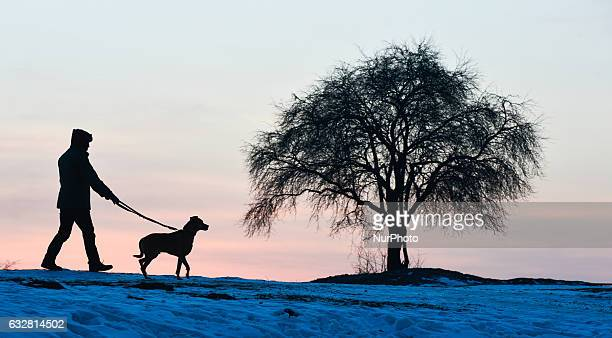 A person walks his dog during a smog mixed with fog over Krakow area seen near Krakus Mound during a smog alert on 26 January as the air pollution in...