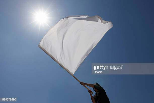 Person Waving Flag