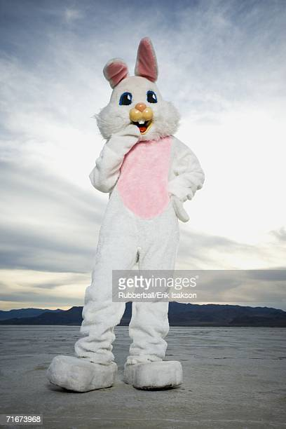 Person wearing a rabbit costume