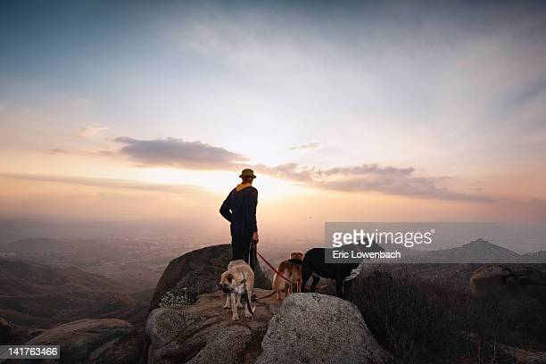 Person with three dogs