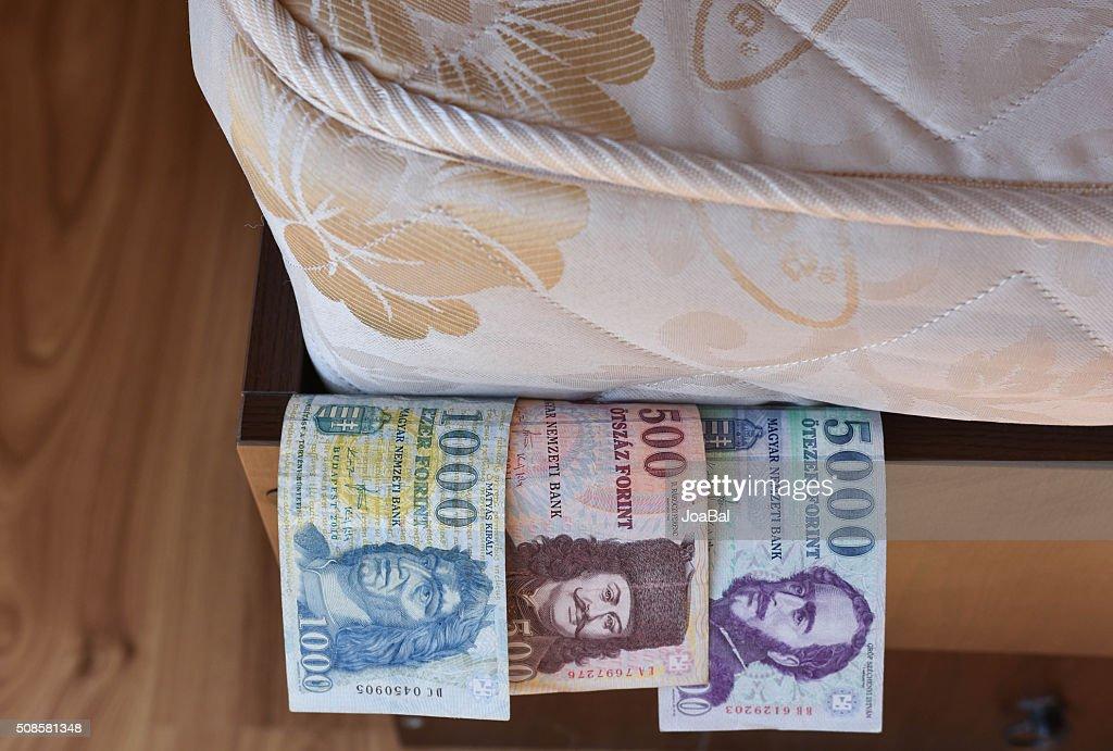 Personal forint savings : Bildbanksbilder