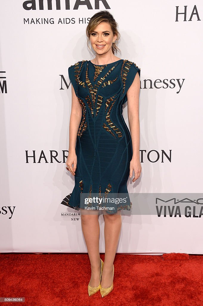 TV personality <a gi-track='captionPersonalityLinkClicked' href=/galleries/search?phrase=Carly+Steel&family=editorial&specificpeople=3963749 ng-click='$event.stopPropagation()'>Carly Steel</a> attends the 2016 amfAR New York Gala at Cipriani Wall Street on February 10, 2016 in New York City.