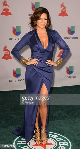 TV personality Pamela Silva Conde attends the 15th Annual Latin GRAMMY Awards at the MGM Grand Garden Arena on November 20 2014 in Las Vegas Nevada
