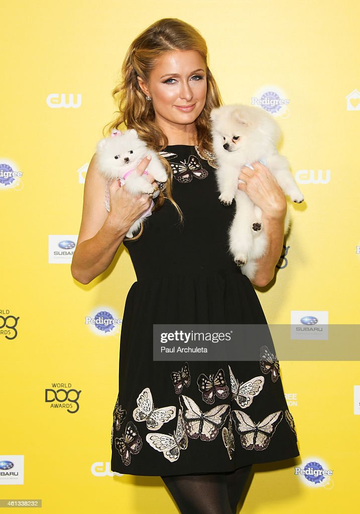 TV Personality <a gi-track='captionPersonalityLinkClicked' href=/galleries/search?phrase=Paris+Hilton&family=editorial&specificpeople=171761 ng-click='$event.stopPropagation()'>Paris Hilton</a> attends The World Dog Awards at Barker Hangar on January 10, 2015 in Santa Monica, California.