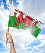 Person holding the national flag of Wales high in the air against a bright sky and sun rays.
