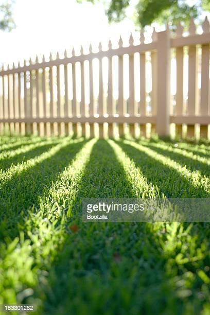 Perspective shadow picket fence