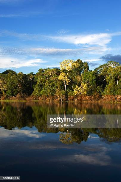 Peru Amazon River Near Iquitos Small Tributary Rainforest Reflections