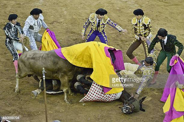 Peruvian bullfighter Andres Roca Rey and Spanish bullfighter David Fandila 'El Fandi' help Colombian picador Rafael Torres after he was thrown from...