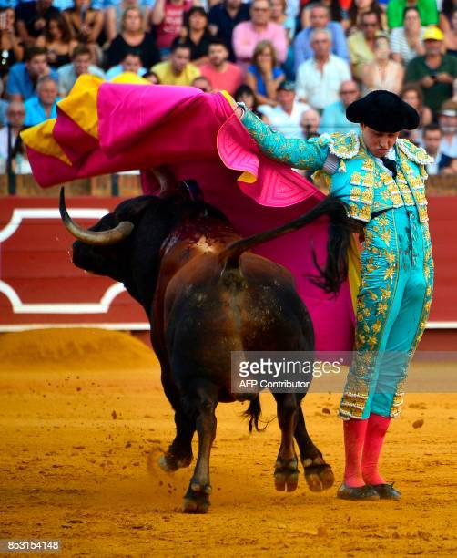 Peruvian matador Andres Roca Rey performs a pass with capote during a bullfight at the Maestranza bullring in Sevilla on September 24 2017 / AFP...