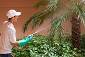 Pest control technician using high pressure spray gun and hose with heavy duty gloves