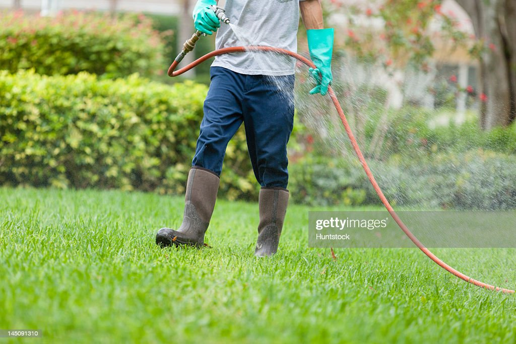 Pest control technician using high pressure spray gun and hose with heavy duty gloves : Stock Photo