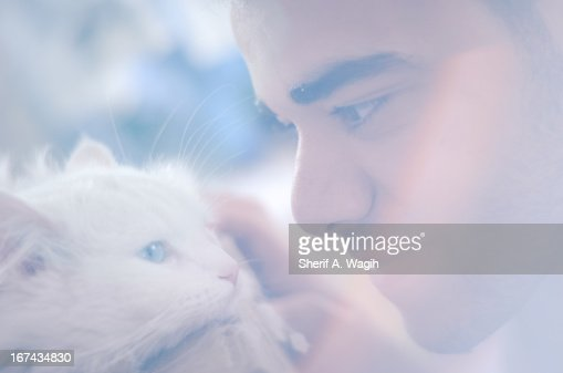 Pet affection : Foto de stock