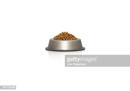 Pet Dish with Food : Stock Photo