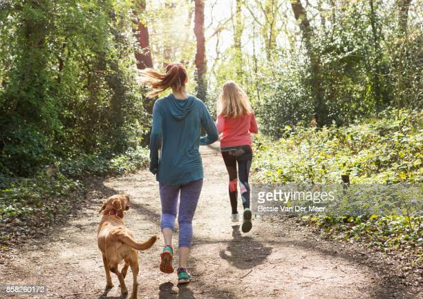Pet dog follows runners, exercising in forest.