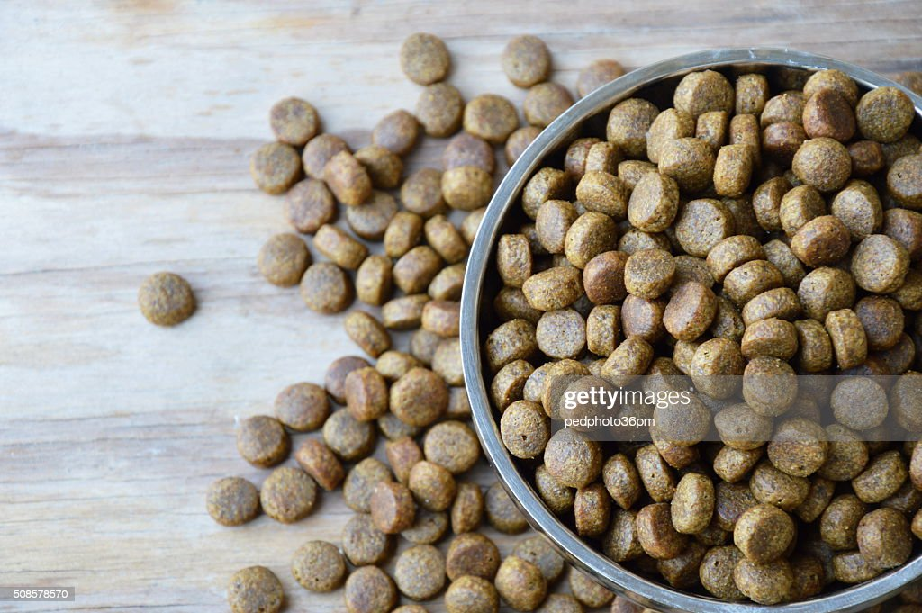 pet food in circle stainless bowl : Stock Photo