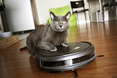 Pet friendly smart vacuum cleaner with a cat