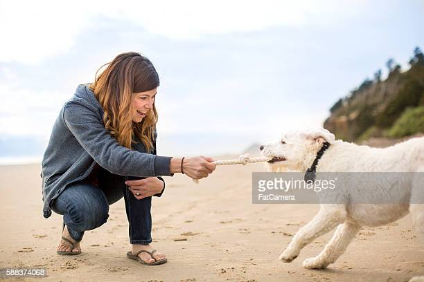 Pet owner playing tug of war with her dog on the beach