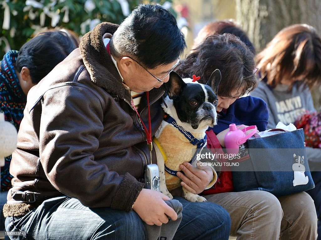 Pet owners bow their heads at a purification ceremony from Shinto priests (not pictured) at the Ichigaya Kamegaoka-Hachiman shrine in Tokyo on January 13, 2013. Some 500 pet owners visited the shrine to celebrate the New Year and pray for the health and happiness of their animals. AFP PHOTO / Yoshikazu TSUNO