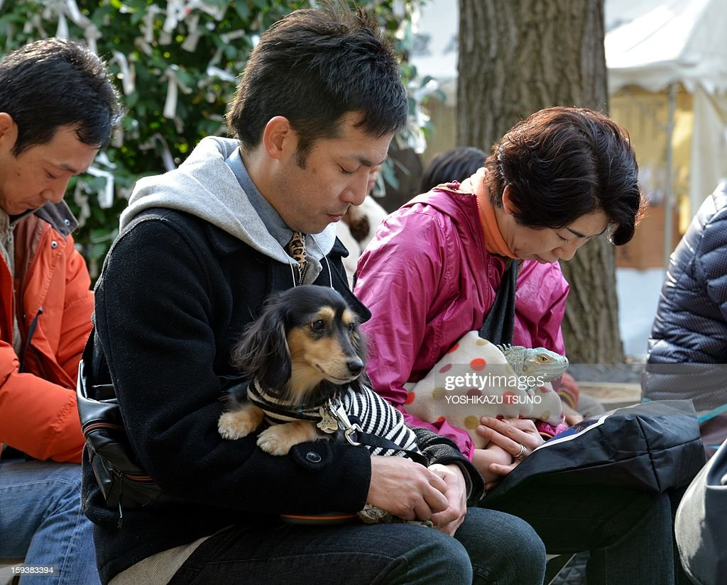 Pet owners holding their dogs and a green iguana bow their heads during a purification ceremony from Shinto priests (not pictured) at the Ichigaya Kamegaoka-Hachiman shrine in Tokyo on January 13, 2013. Some 500 pet owners visited the shrine to celebrate the New Year and pray for the health and happiness of their animals. AFP PHOTO / Yoshikazu TSUNO
