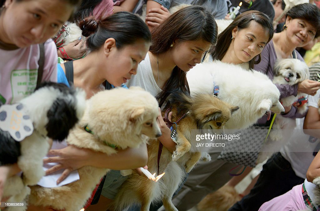Pet owners queue to have a Catholic priest bless their pet dogs and cats during an event in Manila on March 17, 2013. A local government is offering free veterinary services and free vaccinations against rabies as the Department of Health designated March as Rabies Awareness Month as part of its national rabies prevention and control program, with the aid of eliminating the disease from the Philippines by 2020. AFP PHOTO / JAY DIRECTO